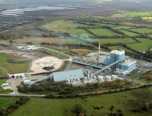 Should Ireland fuel its power stations with wood shipped from Australia?