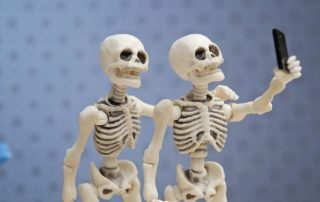 Six fun facts about the human skeleton